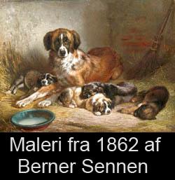 Maleri